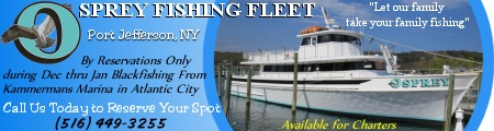 Osprey Fishing Fleet out of Port Jefferson, NY